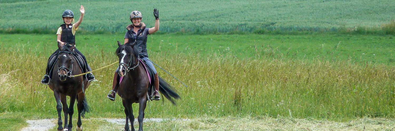 Hofgut Georgenau Ausreiten Pferde Wiese