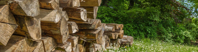 Hof Georgenau Hofgut Forst- und Baggerarbeiten Holzscheite