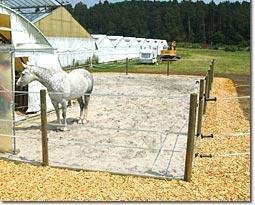 Pferdekoppel mit Kiesbett, Sandauffüllung und Einfassung mit Holzspänen